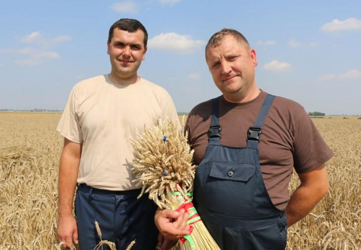 Два комбайновых экипажа Слуцкого района намолотили более трех тысяч тонн зерна - Слуцк Деловой
