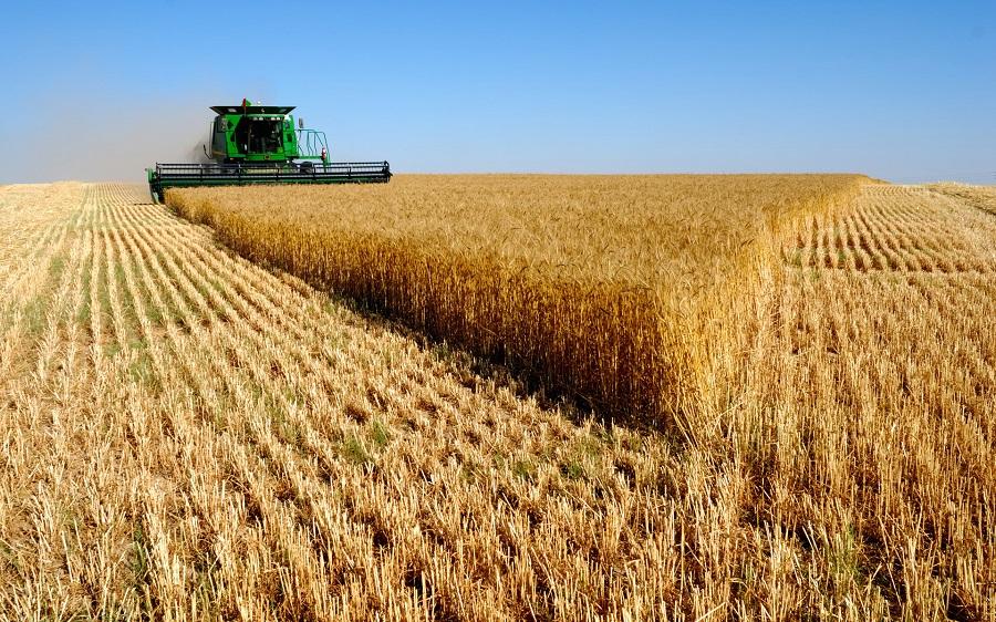 Аграрии Случчины преодолели заветную планку в 100 тысяч тонн - Слуцк Деловой