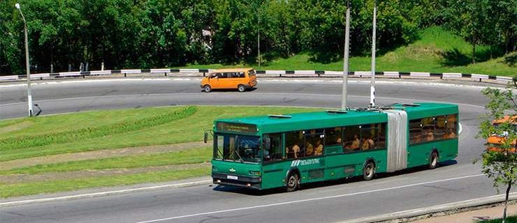 504-bus