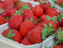 strawberries-823782_1280_086d9a1578605b3f2bbe3cf769e9b5e4