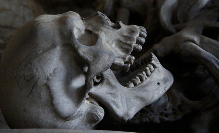 509-skelet