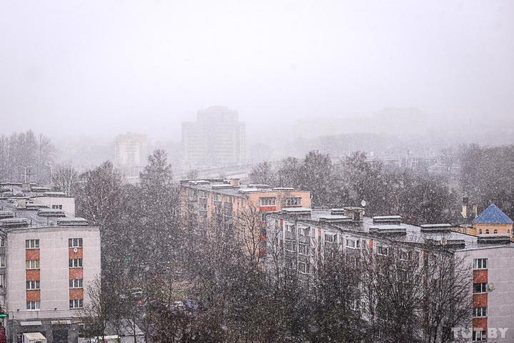005_20200212_bas_snowfall_dsc6575
