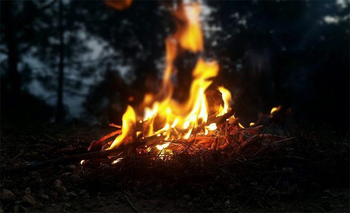 711-firegrass