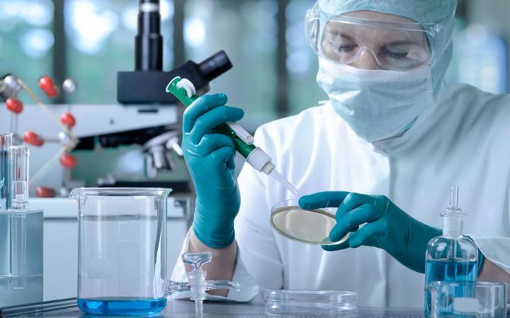 vrach_medicina_laboratoriya_stvolovye_kletki
