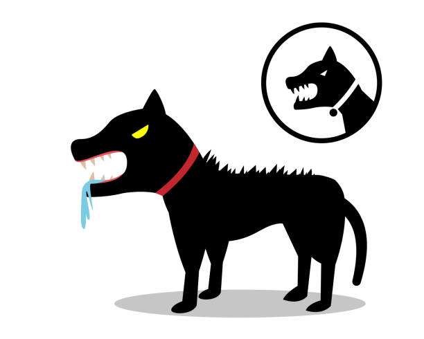 Rabid dog in flat style and icon, vector design